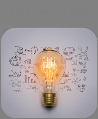 Innovación ágil
